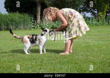 Niederlande, Helvoirt, kleines Mädchen (2-3) spielen mit Katzen im Garten - Stockfoto