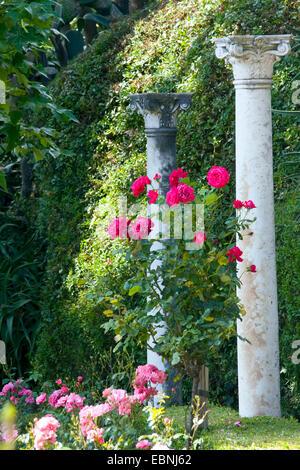 Repliken von antiken Collums im Garten der Villa Ephrussi de Rothschild, Frankreich, Saint-Jean-Cap-Ferrat - Stockfoto