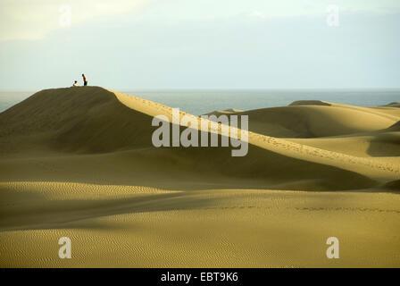 Spaziergänger auf Sanddünen am Meer im Licht der Abendsonne, Kanarische Inseln, Gran Canaria, Maspalomas - Stockfoto