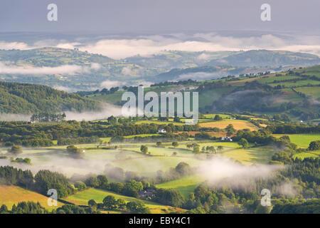 Nebel bedeckt Hügellandschaft im Morgengrauen, Brecon Beacons, Wales. (August) im Sommer 2014. - Stockfoto