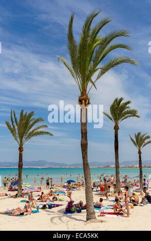 Playa de Palma, Bucht von Palma, Mallorca, Balearen, Spanien - Stockfoto