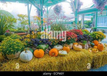 Herbst-Ernte-Display, Butchart Gardens, British Columbia, Kanada Stockfoto