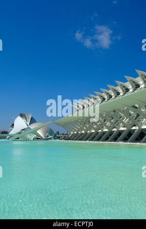 Principe Felipe Wissenschaftsmuseum, Stadt der Künste und Wissenschaften von Santiago Calatrava, Comunidad Valenciana, - Stockfoto