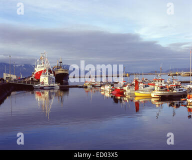 island reykjavik angelboote fischerboote im hafen mit gefrorenen meer stockfoto bild 413352. Black Bedroom Furniture Sets. Home Design Ideas