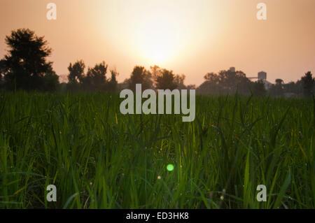 Ländliches Dorf Sonnenuntergang niemand - Stockfoto