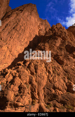Todra Schluchten, Todra-Tal, Atlasgebirge, Marokko, Nordafrika - Stockfoto