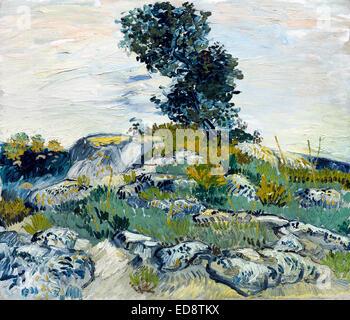 Vincent Van Gogh, The Rocks (Felsen mit Oak Tree) 1888 Öl auf Leinwand. Museum of Fine Arts, Houston, Texas, USA. - Stockfoto