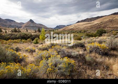 Einem Hügel von the Painted Hills, John Deer Fossil Beds, Oregon, Vereinigte Staaten - Stockfoto