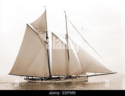 Mayflower, Mayflower (Schoner), Yachten, 1891 - Stockfoto