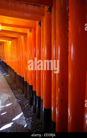 Roten Torii im Fushimi Inari-Schrein in Kyōto, Japan - Stockfoto