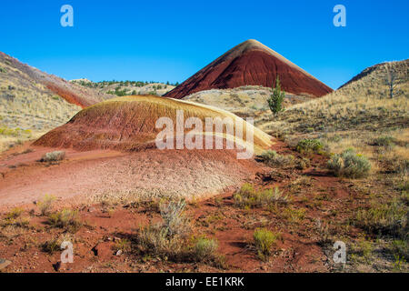 Mehrfarbige Schichten Hügel in der Painted Hills-Einheit in den John Day Fossil Beds National Monument, Oregon, - Stockfoto