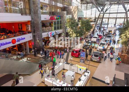 Johannesburg frauen suchen männer