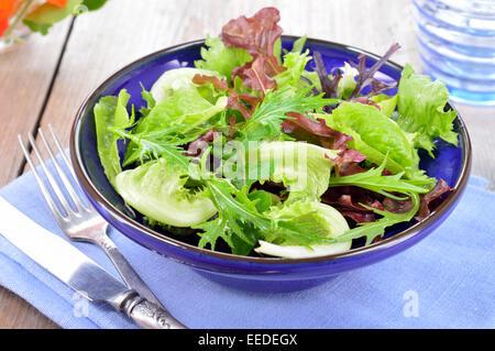 Frische gemischte hellgrün Blätter Salat. Salat, Mizuna, Rucola und Oakleave Salat in blau Schüssel auf dem Tisch.