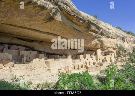 Cliff Palace Cliff dwelling, Mesa Verde National Park, Colorado, United States - Stockfoto