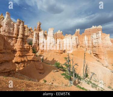 Felsen der Navajo Loop Trail, Bryce Canyon National Park, Bryce Canyon, Utah, United States - Stockfoto