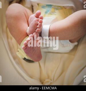 Nahaufnahme eines Füßen Mischlinge Neugeborenen Stockfoto