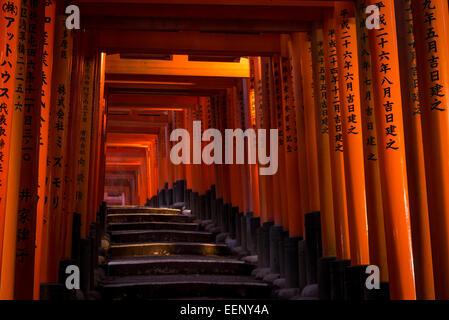 Tausende von roten Torii-Tore säumen den Weg am Fushimi Inari-Schrein in Kyoto, Japan. - Stockfoto