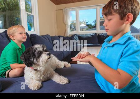 """Jungen mit Hörschädigungen in amerikanischer Gebärdensprache auf ihrer Couch Unterzeichnung """"Haustiere erlaubt"""" - Stockfoto"""