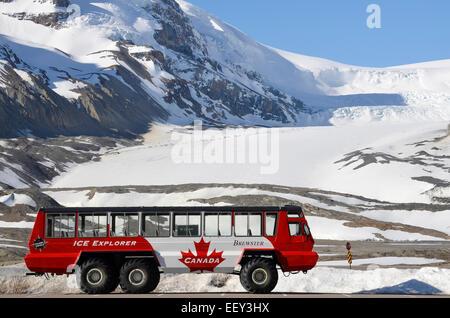 Athabasca Gletscher, Jasper Nationalpark, Kanada - 13. Mai 2012: Parkplatz Snowcoach vor dem Athabasca-Gletscher. - Stockfoto