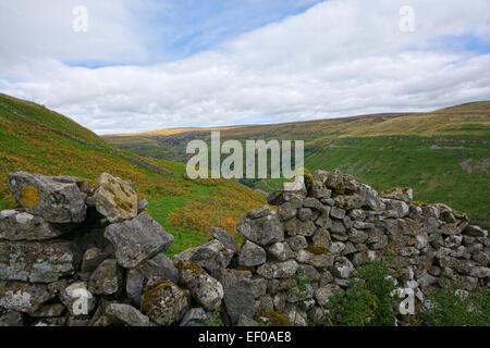 Swaledale in der Yorkshire Dales National Park, North Yorkshire - Stockfoto