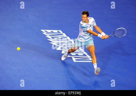 Melbourne, Australien. 29. Januar 2015. 2015. Herren Halbfinale. Andy Murray gegen Tomas Berdych.  Tomas Berdych - Stockfoto