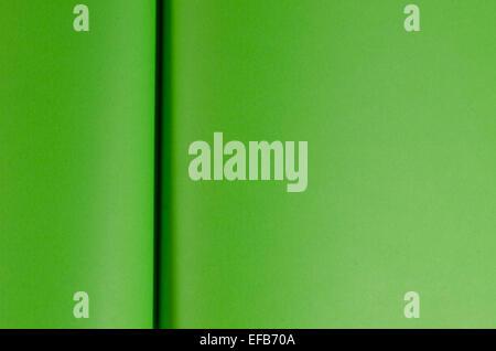 grüne Seiten im Hintergrund geöffnete Buch - Stockfoto