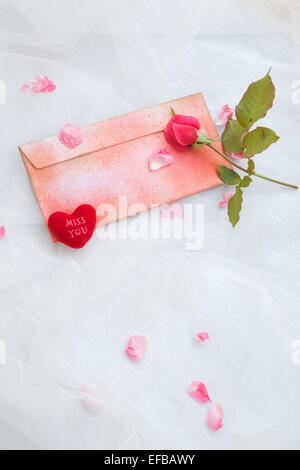 Weiß Rosenblüten transparent, Tapete Muster Blume Textur Hintergrund ...