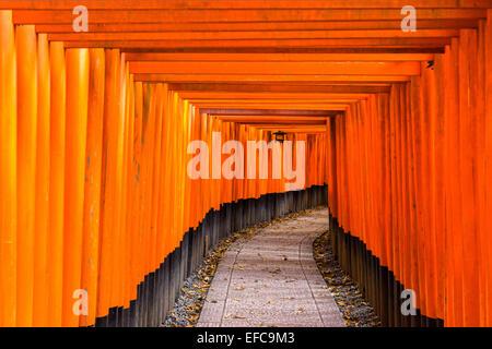 Fushimi Inari-Taisha-Schrein in Kyōto, Japan - Stockfoto
