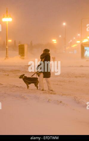 Chicago, USA. 1. Februar 2015. Eine Dame geht ihr Hund im Schneesturm in Chicago, USA, am 1. Februar 2015. Ein Schneesturm hit Chicago am Sonntagmorgen und verursacht mehr als 1.000 Flüge abgesagt. © He Xianfeng/Xinhua/Alamy Live-Nachrichten Stockfoto