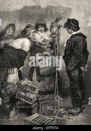 Vogel-Markt in Paris, um 1895, von Angelo Dall'Oca Bianca, - Stockfoto