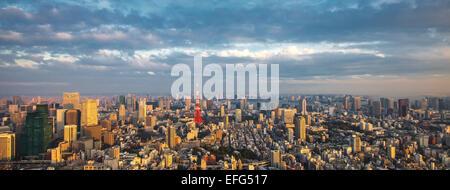 Tokio Panorama Luftbild - Stockfoto