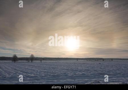 Winter-Sonnenuntergang über Wiesen und Wald mit Sonne hinter Wolke - Stockfoto