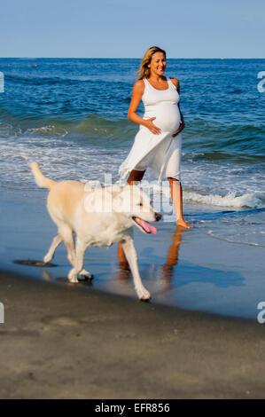 Schwangere Reife Frau zu Fuß Hund am Strand - Stockfoto