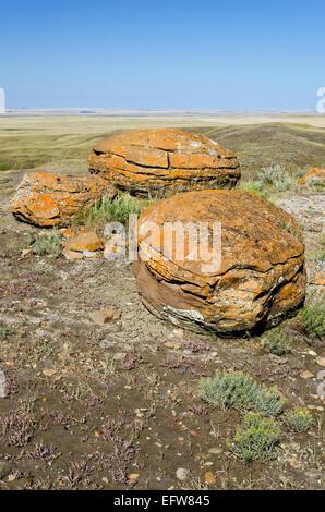 Drei kugelförmigen Sandstein Konkretionen im Red Rock Coulee Provincial Park in der Nähe von Medicine Hat, im Süden - Stockfoto