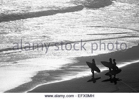 Gruppe von Surfern, die mit Blick auf das Meer Surfbretter - Stockfoto