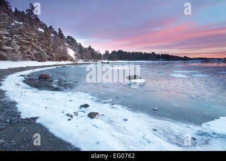 Wintermorgen am Ofen, an der Küste der Oslofjord in Råde Kommune, Østfold Fylke, Norwegen. - Stockfoto
