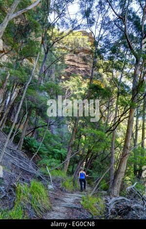 Eine 33-jährige blonde Frau wird angehalten, um die Aussicht auf eine Wanderung durch Wollemi Nationalpark in New - Stockfoto