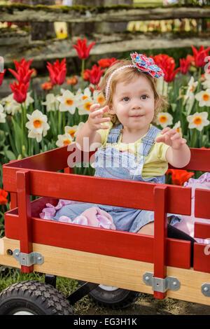 Kleinkind Mädchen fordert ihre Flasche Wasser durch das erreichen in einem Wagen in einem Tulpe Garten in Mount - Stockfoto