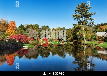 Asticou Azalea Garden, Northeast Harbor, Maine, USA - Stockfoto
