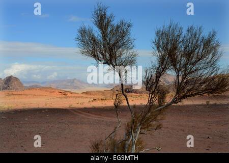 JORDAN - die Wüste WADI RUM - Stockfoto