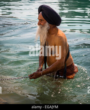 Ein Alter Sikh Mann braucht, um das heilige Wasser des Goldenen Tempel, Amritsar, Punjab, Indien - Stockfoto