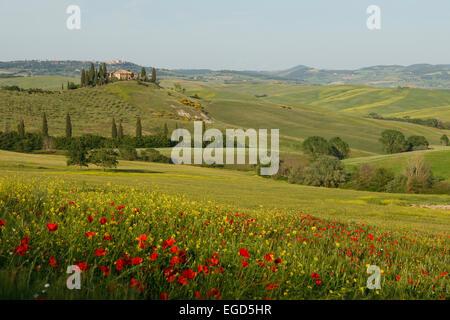 typisch toskanische landschaft mit h gelketten landhaus. Black Bedroom Furniture Sets. Home Design Ideas