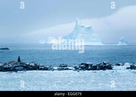 Ein Eisberg schwimmt in der Entfernung von der Küste von Point Wild, Elephant Island, Antarktis - Stockfoto