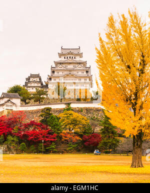 Burg Himeji, auch genannt White Heron Castle, im Herbst, Japan. - Stockfoto