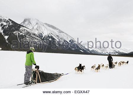 Menschen in schneebedeckten Feld unter Bergen Hundeschlittenfahrten - Stockfoto