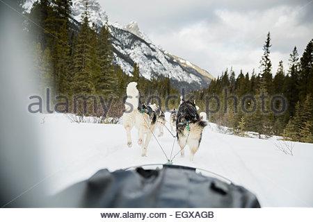 Hundeschlitten Sie unterwegs unter verschneiten Bergen - Stockfoto