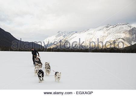 Hundeschlittenfahrten Sie in schneebedeckten Feld unter Bergen - Stockfoto