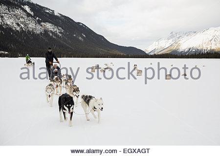Hundeschlitten in schneebedeckten Feld unter Bergen - Stockfoto