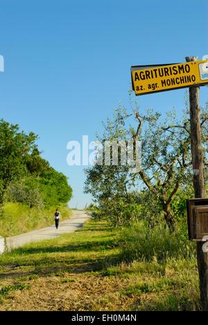 Landstraße, die durch Ackerland mit Agrotourismus zu unterzeichnen, in der Nähe von San Gimignano, Toskana, Italien - Stockfoto