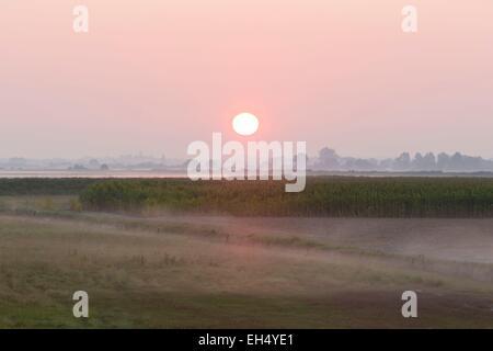 Frankreich, Manche, Mont Saint Michel Bay, aufgeführt als Weltkulturerbe der UNESCO, Sunrise in der Landschaft Aroud - Stockfoto